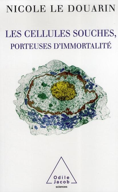 Les Cellules Souches Porteuses D Immortalite
