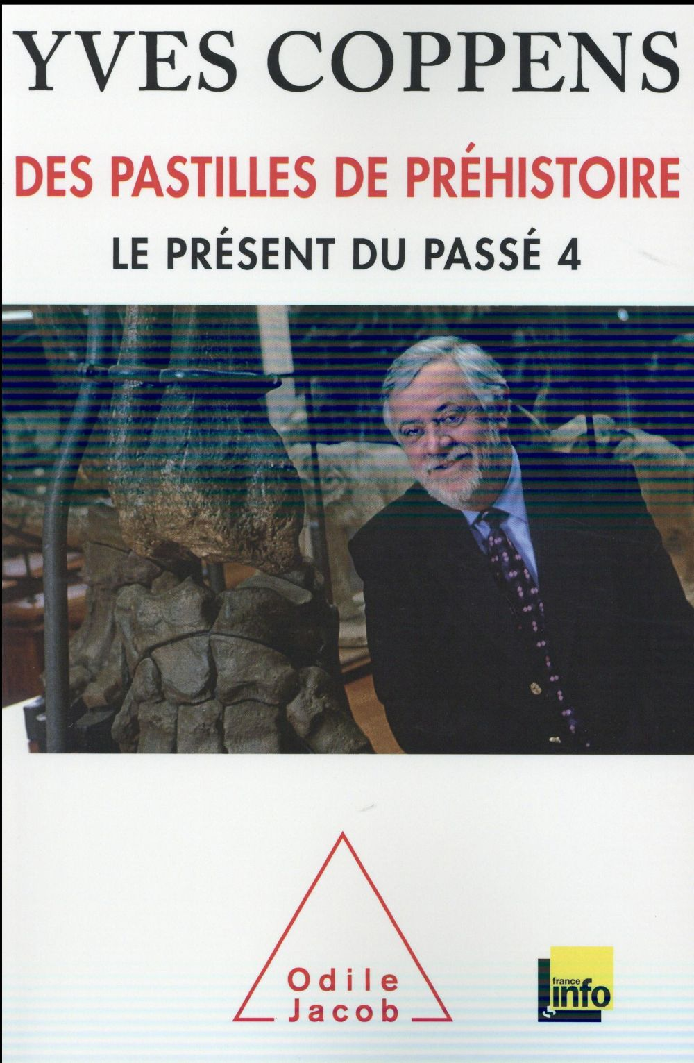 LE PRESENT DU PASSE 4 : DES PASTILLES DE PREHISTOIRE