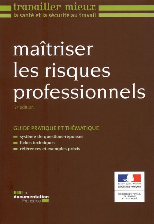 Maitriser Les Risques Professionnels (2e Edition)