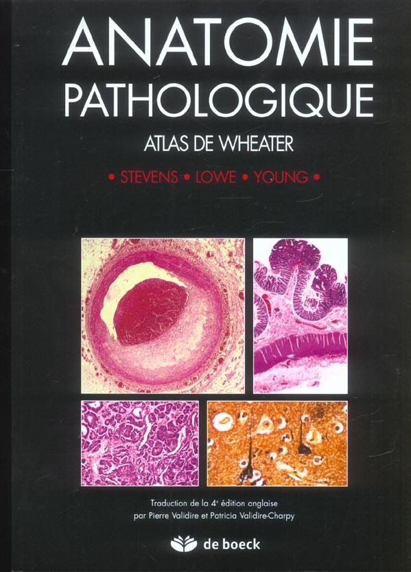 Anatomie Pathologique Atlas De Wheater
