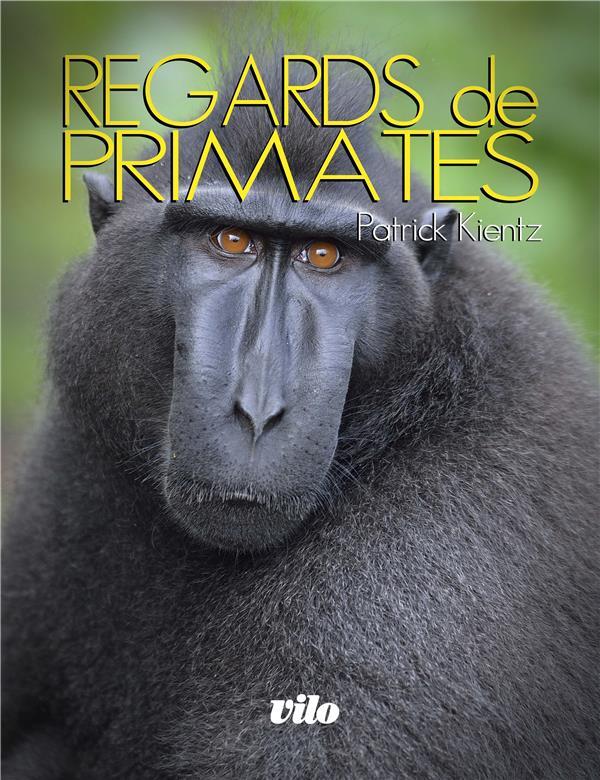 Regards de primates