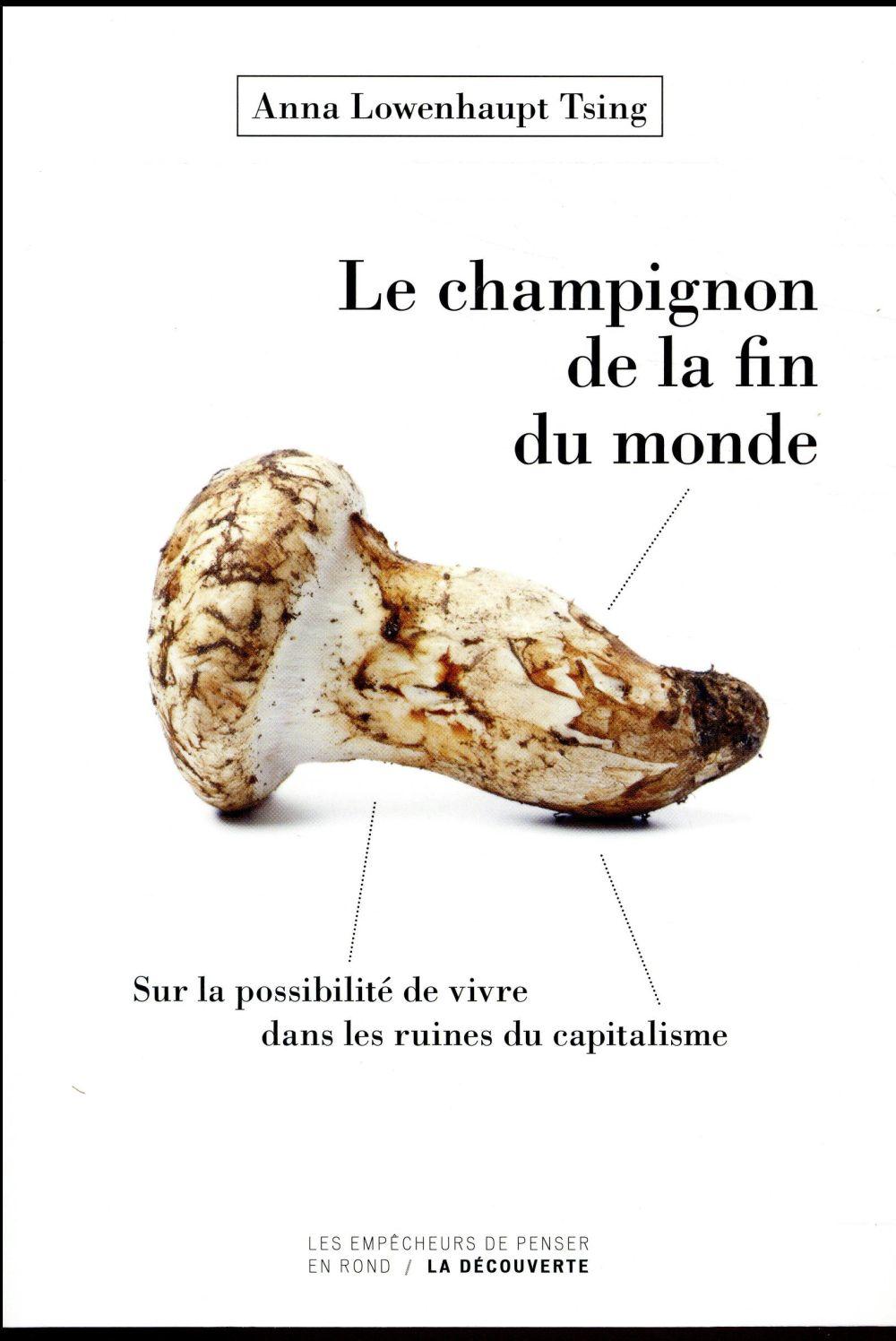 LE CHAMPIGNON DE LA FIN DU MONDE