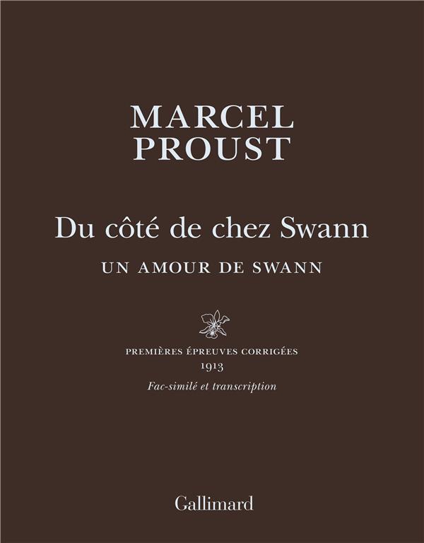 Du côté de chez swann ; un amour de swann