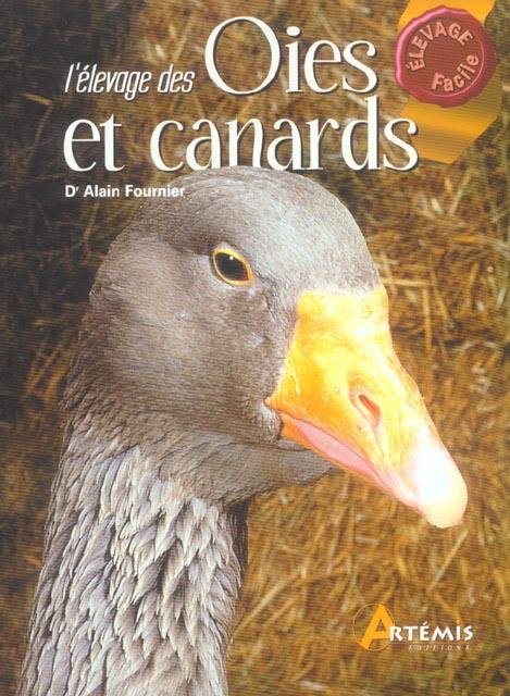 Elevage Des Oies Et Canards