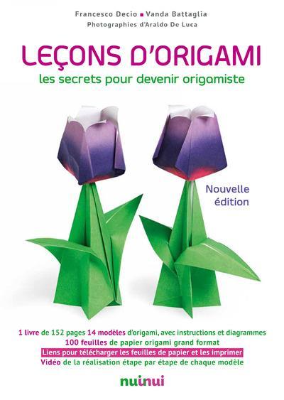 Lecons d'origami ; les secrets pour devenir origamiste