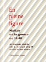 en pleine figure ; haïkus de la guerre de 14-18 - Dominique Chipot