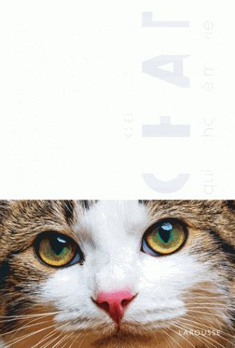 Le chat qui a changé ma vie (version à plier)