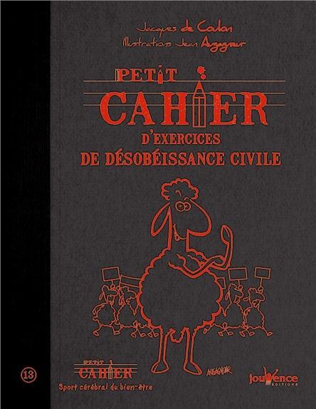 Petit Cahier D'Exercices De Desobeissance Civile