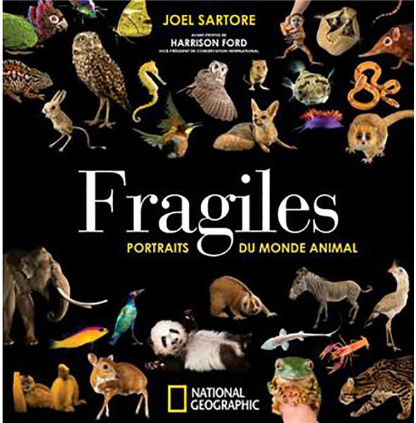 Fragiles ; portraits du monde animal