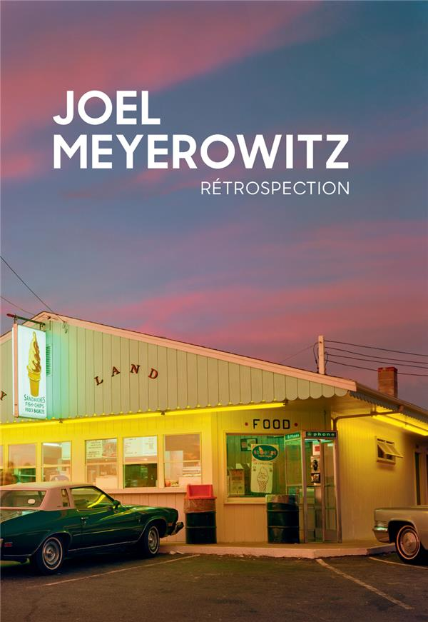 JOEL MEYEROWITZ - RETROSPECTION